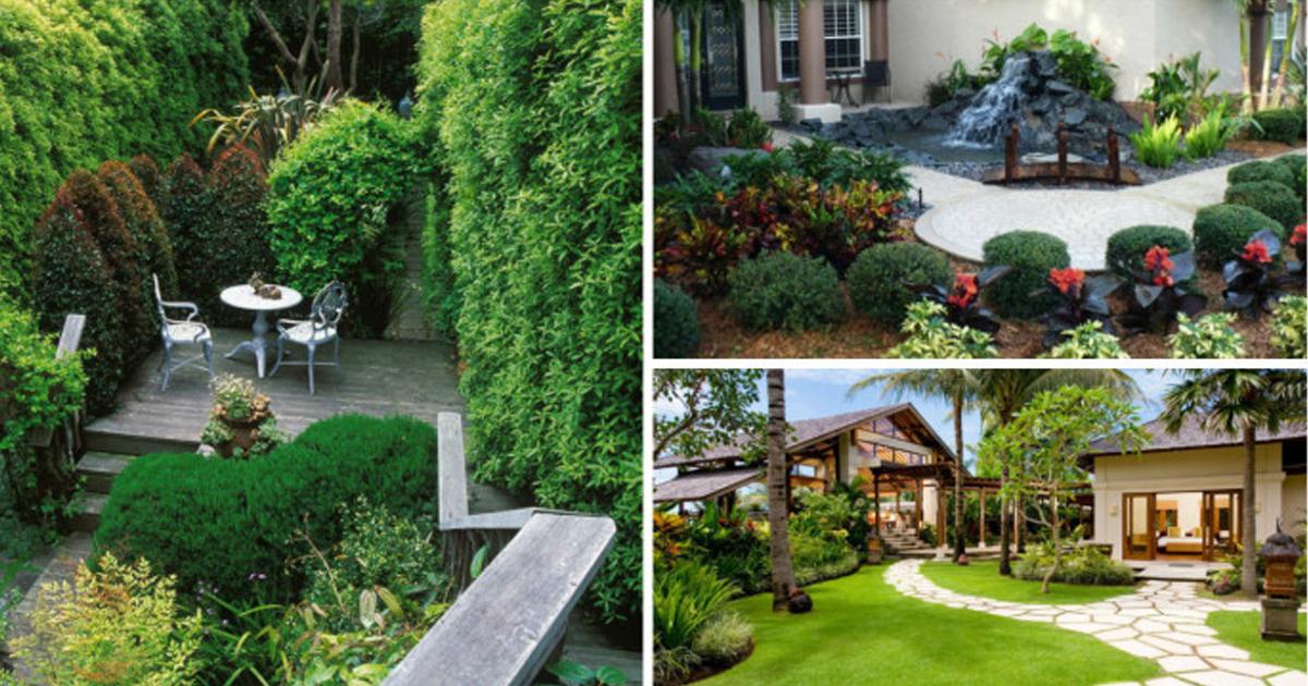 Оформление садовых участков картинки