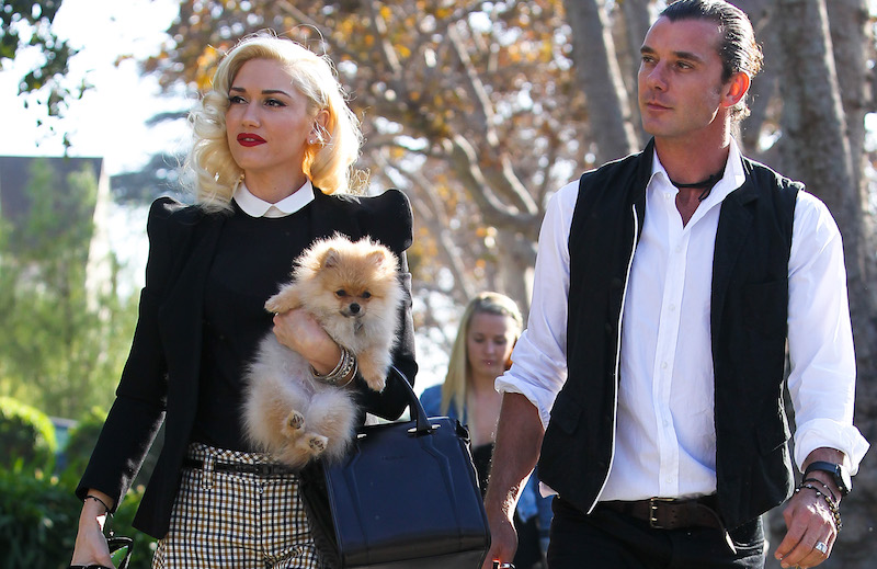 Nanny Mindy Mann with Gavin Rossdale and Gwen Stefani on Thanksgiving 2012. Mann, who reportedly had an affair with Rossdale, walked behind the couple as they went to Gwen's mother's home on November 22, 2012 Pictured: Nanny Mindy Mann and Gavin Rossdale and Gwen Stefani Ref: SPL1174658 111115 Picture by: IRF / Splash News Splash News and Pictures Los Angeles: 310-821-2666 New York: 212-619-2666 London: 870-934-2666 photodesk@splashnews.com