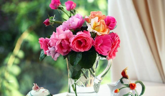 7876160-roses-650-a542d8629a-1484578572-1